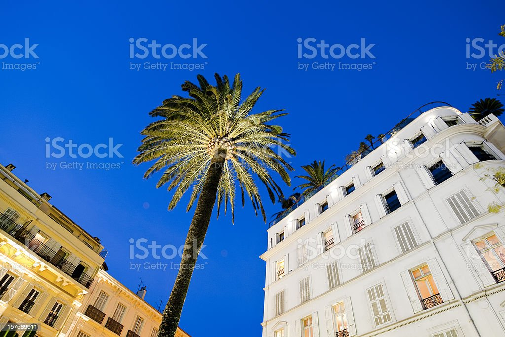 hotel facade and palm tree at sunset in Cannes stock photo