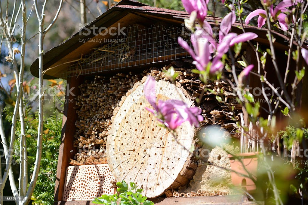 hotel insect shelter for wild bees and weps. stock photo