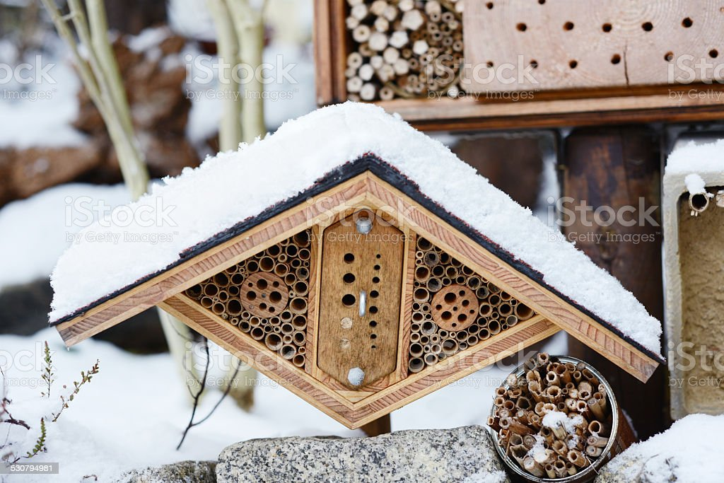 hotel insect shelter in wintertime stock photo