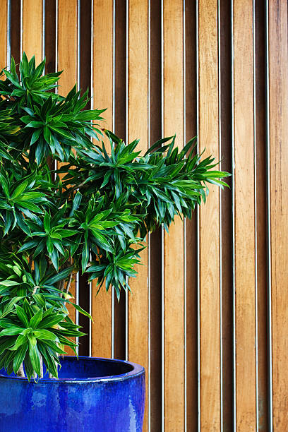 hotel lobby with green plant stock photo