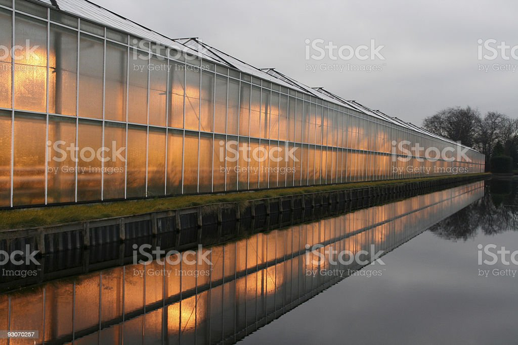 Hothouse royalty-free stock photo
