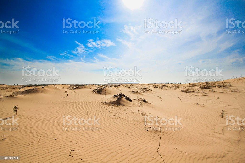 Hotizon of Desert royalty-free stock photo