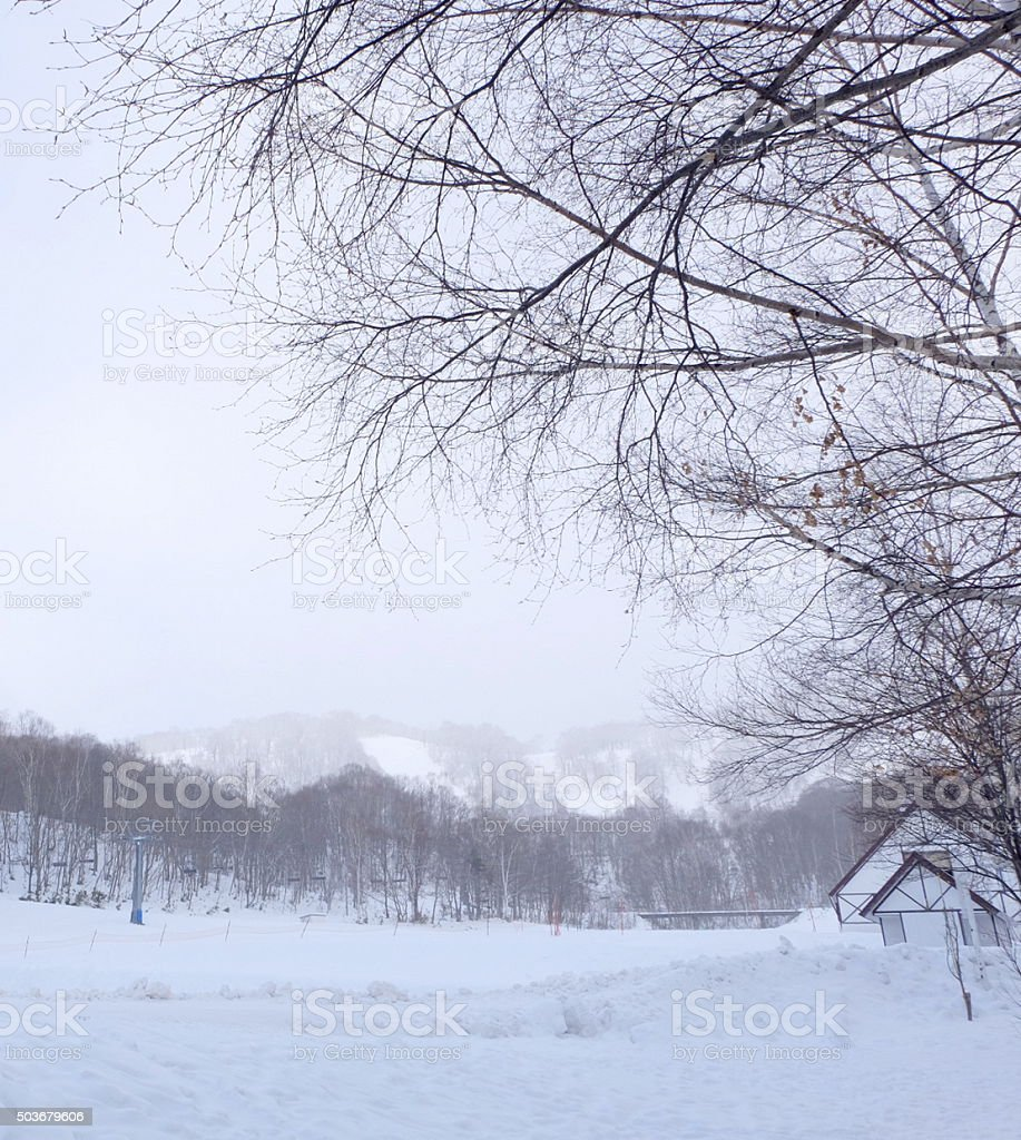 house among snow land and the trees15 stock photo