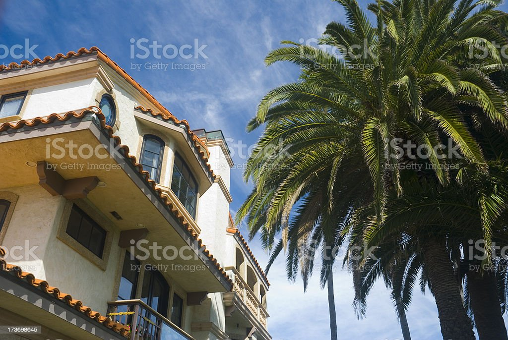 OC House and palm tree stock photo