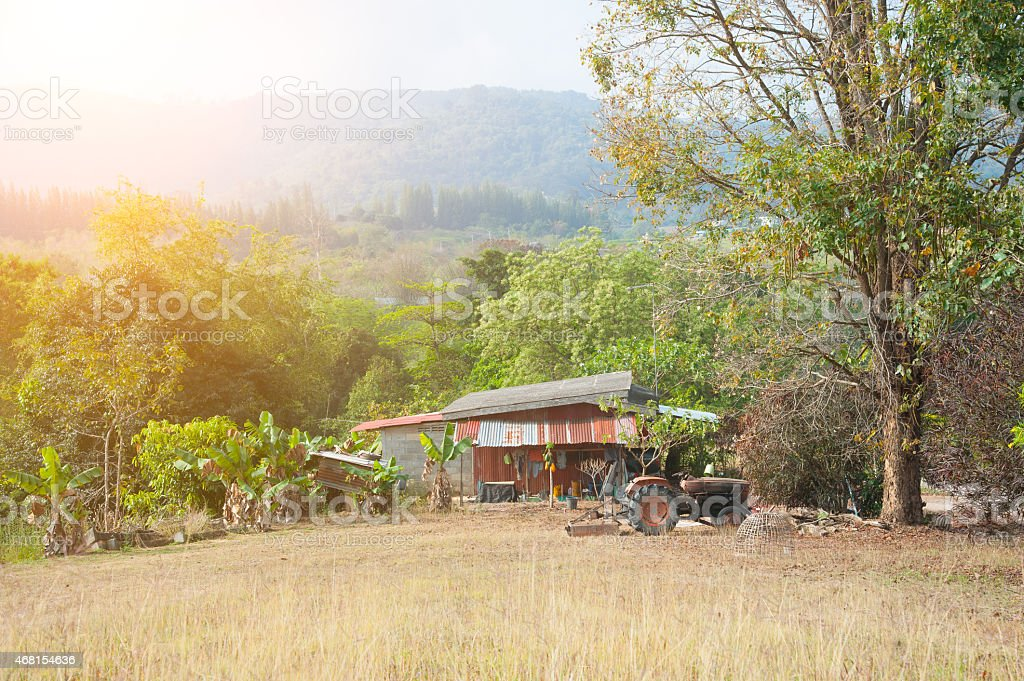 house in forest, house made of natural materials stock photo