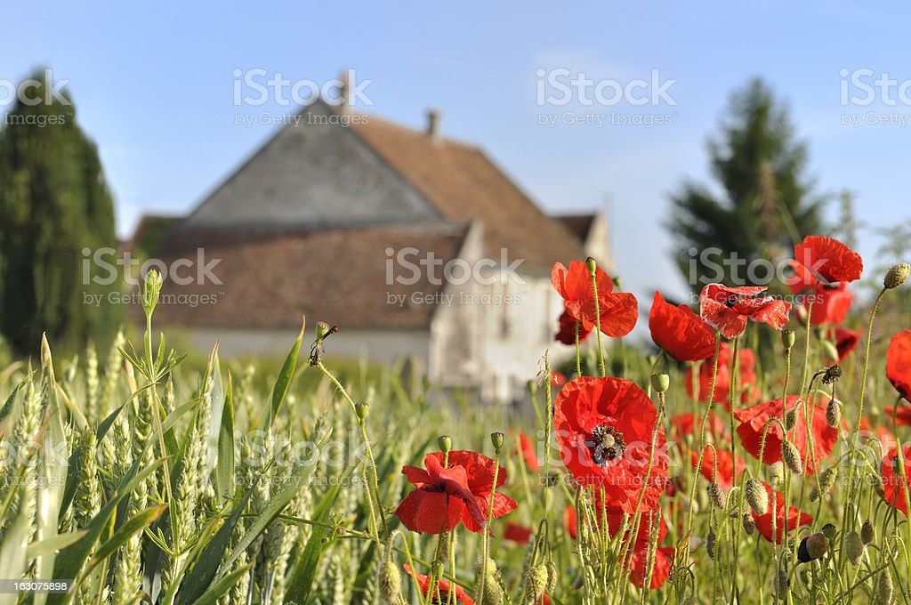 house in the countryside royalty-free stock photo