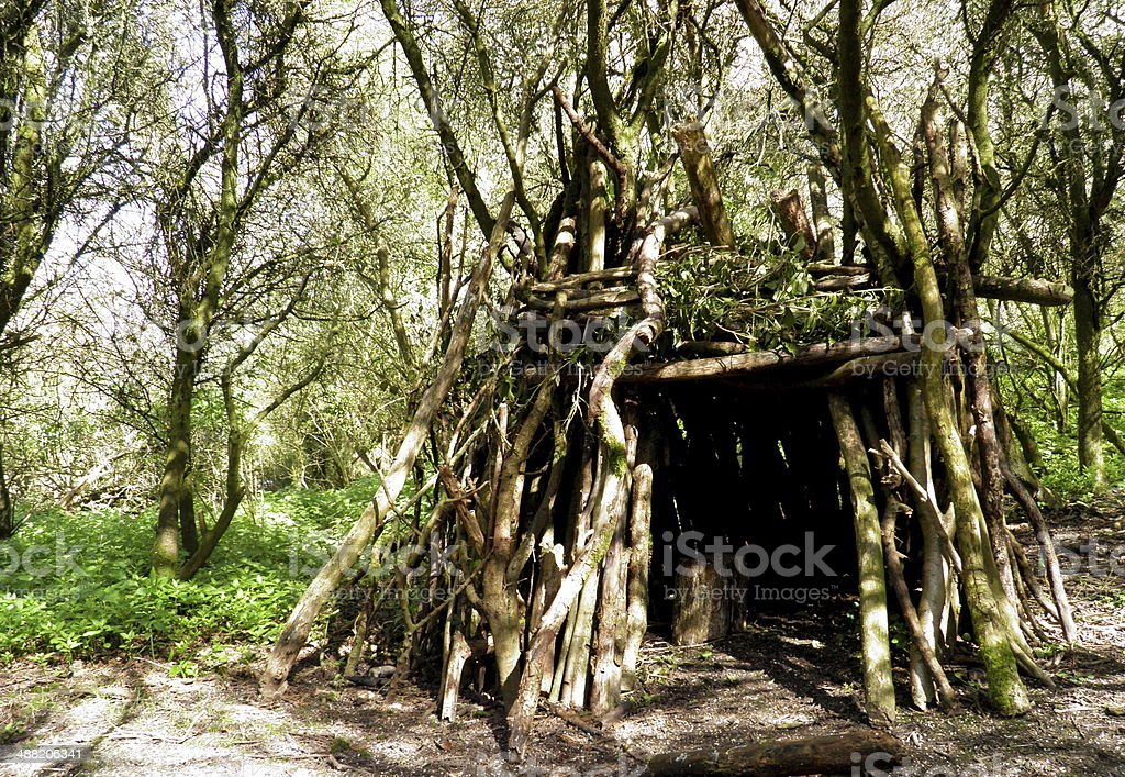 House in the Wood stock photo