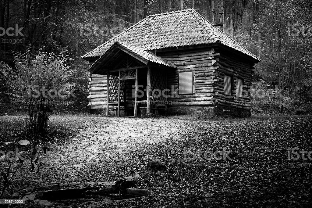 house in the woods stock photo