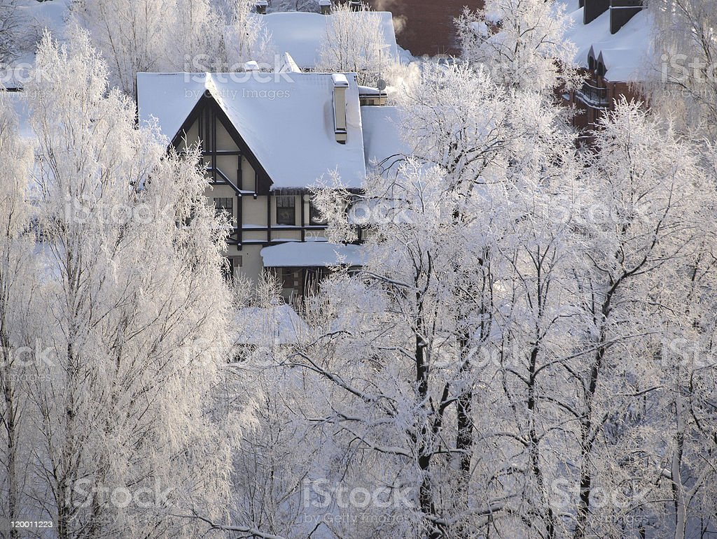 House in winter forest royalty-free stock photo