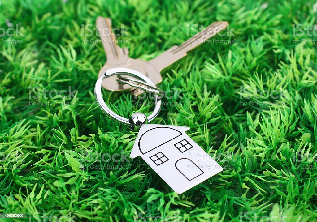 house key ring on  grass stock photo