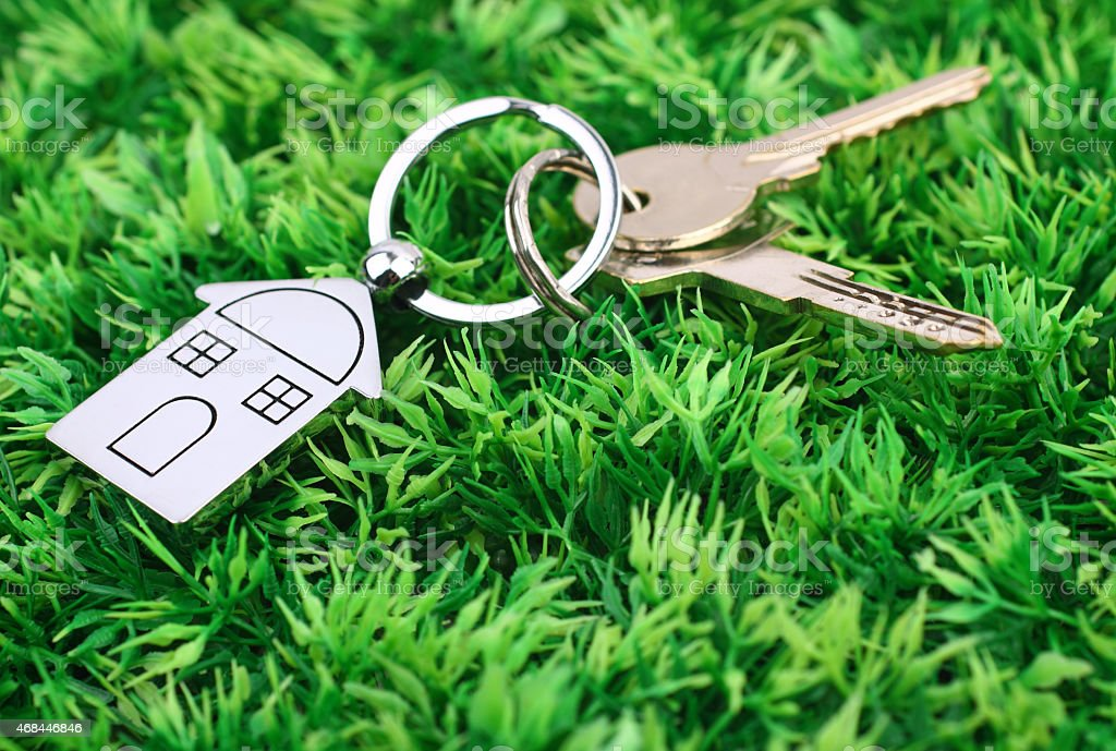 house key  on  grass stock photo