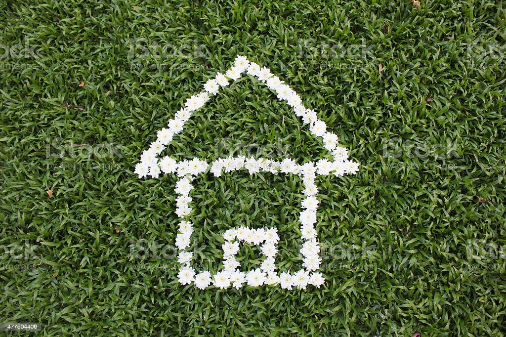 Haus aus daisy Blumen Lizenzfreies stock-foto