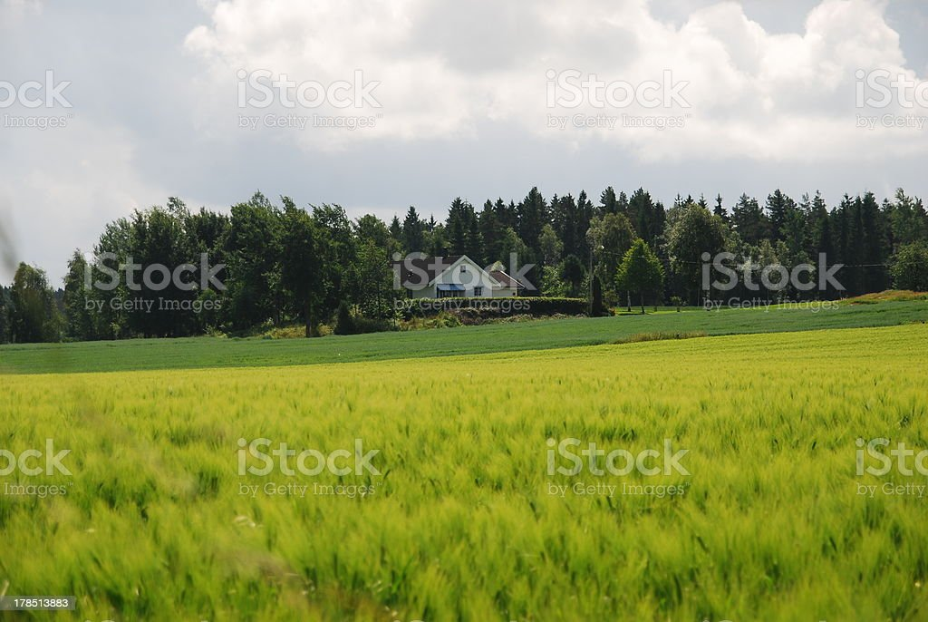 house, meadow, landscape, norway, sweden, peace royalty-free stock photo
