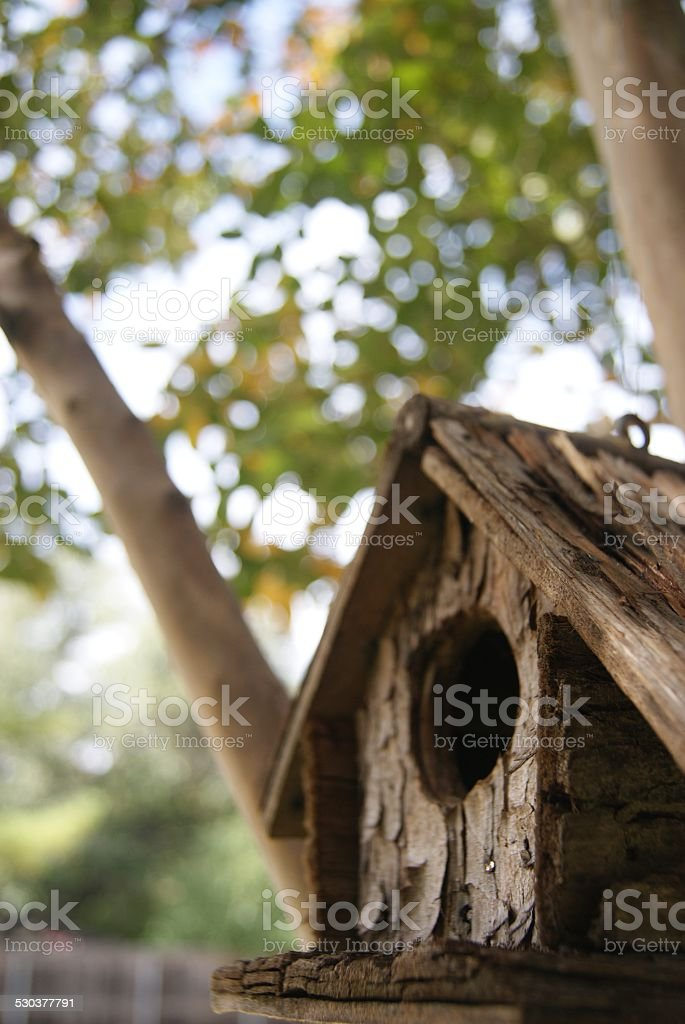 House of Shade royalty-free stock photo