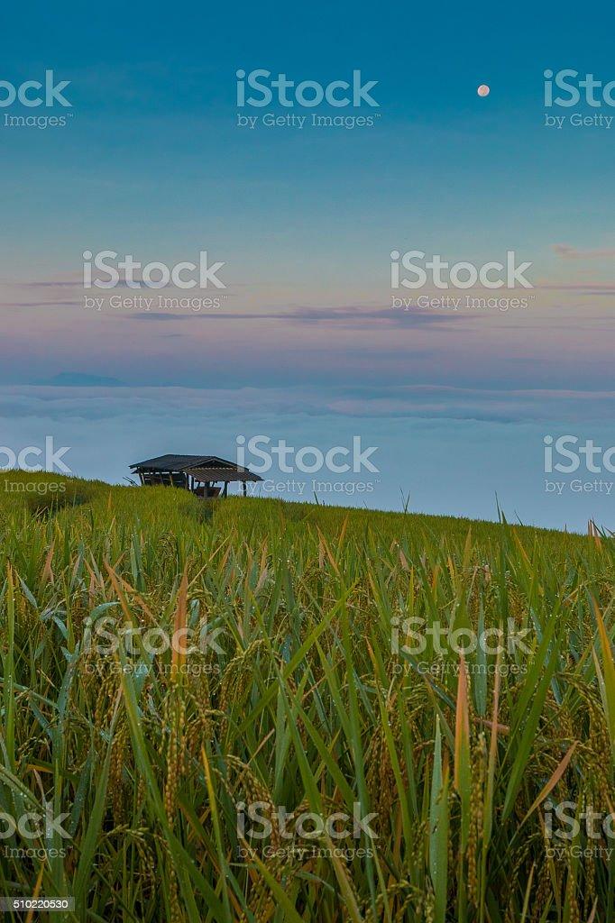 House of sunrise stock photo