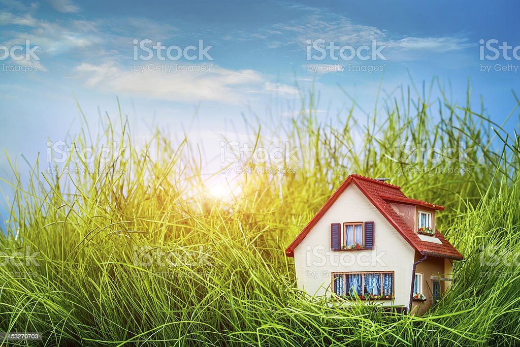 House on the green grass stock photo