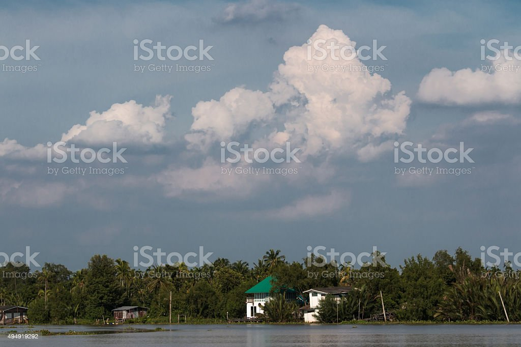 House riverside in mangrove forest with blue sky and cloud stock photo