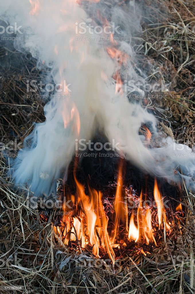 House shaped fire royalty-free stock photo