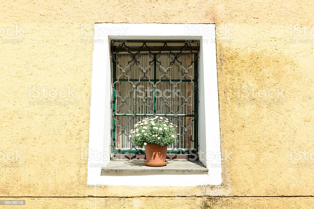 House wall with window and plant in Durnstein, Wachau, Austria stock photo