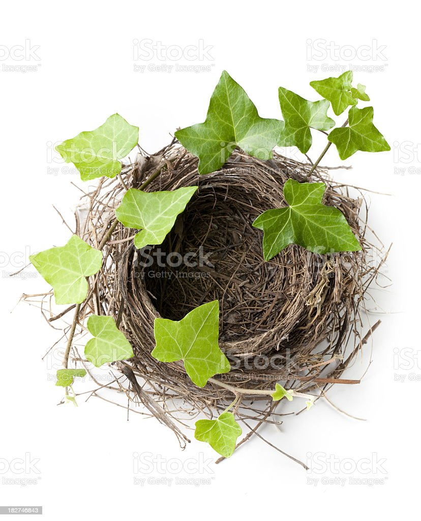 House with garden. Nest royalty-free stock photo