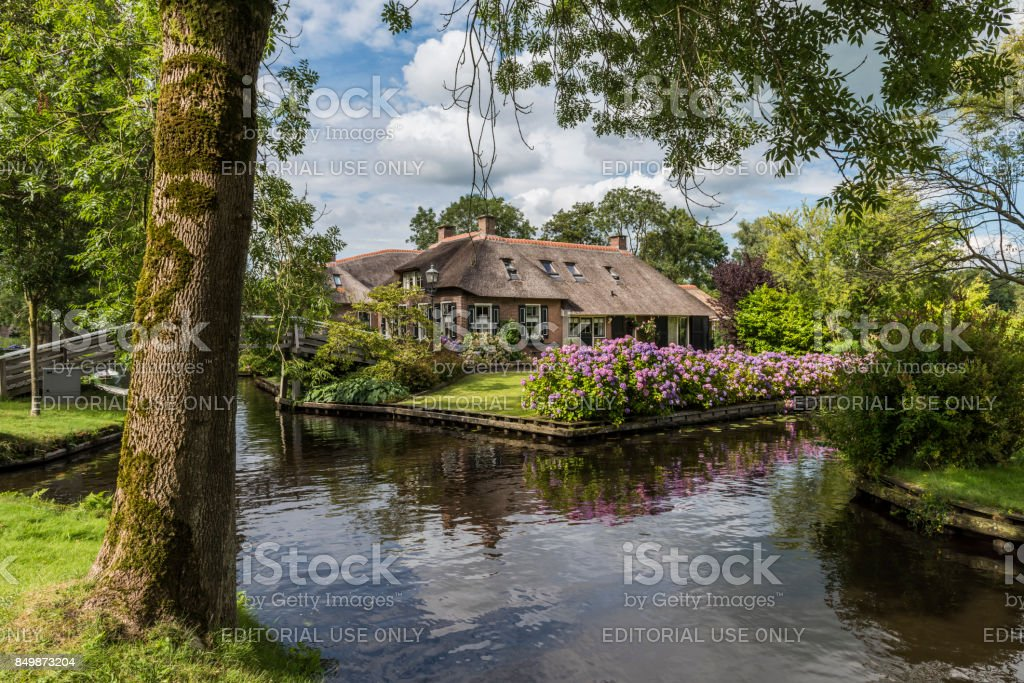 House with Hydrangea and Tree Giethoorn stock photo