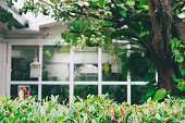 House With Windows Surrounded By Tree. blurred background