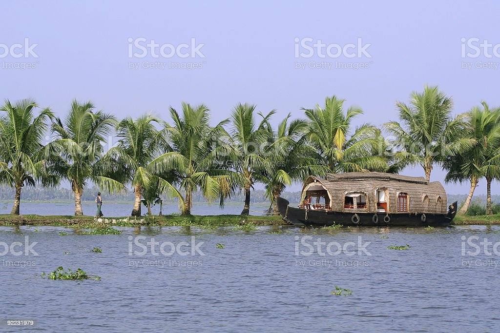 A houseboat on a palm tree lined river stock photo