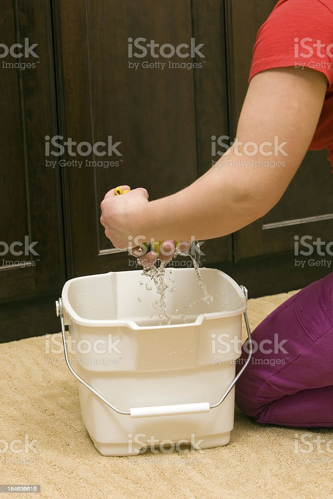 Housecleaner Wringing Rag into a Bucket stock photo