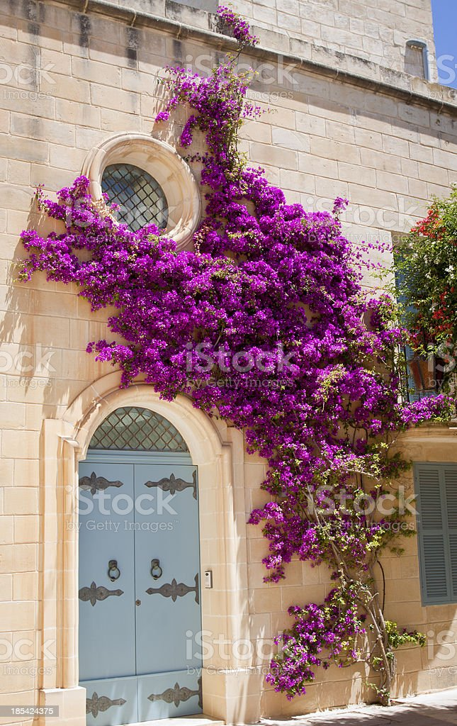 Housefacade with flowers stock photo