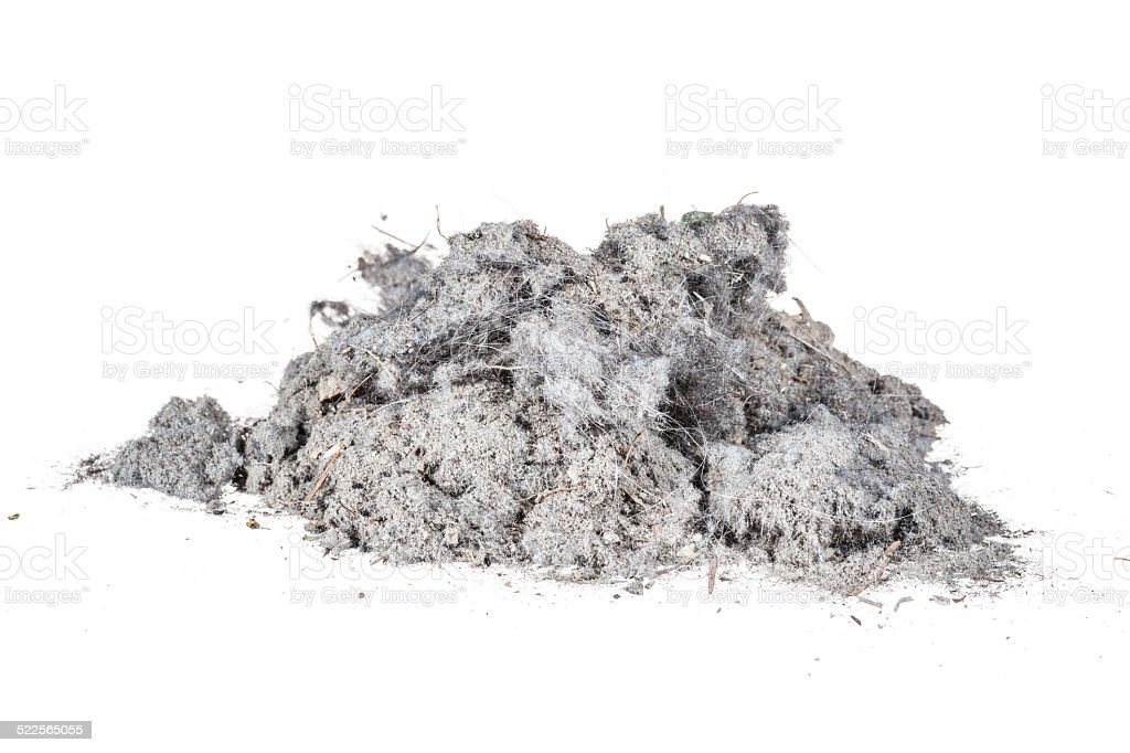 Household dust heap isolated on white stock photo