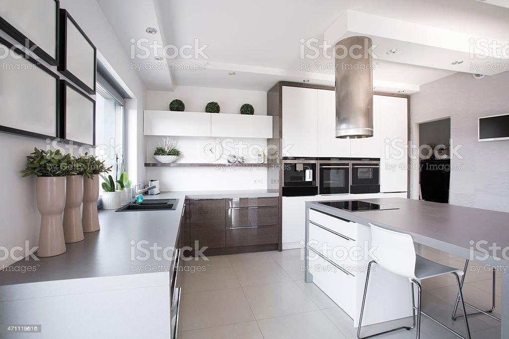 Houseplants in exclusive kitchen stock photo