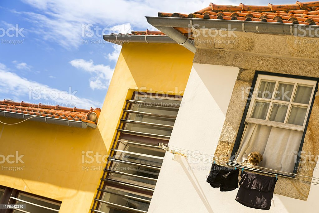 Houses and linen rope in the city of Porto stock photo