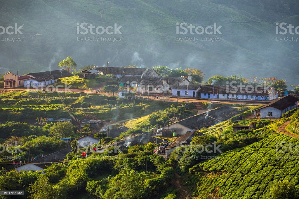 Houses for plantation workers in Munnar tea plantations, Kerala,  India stock photo