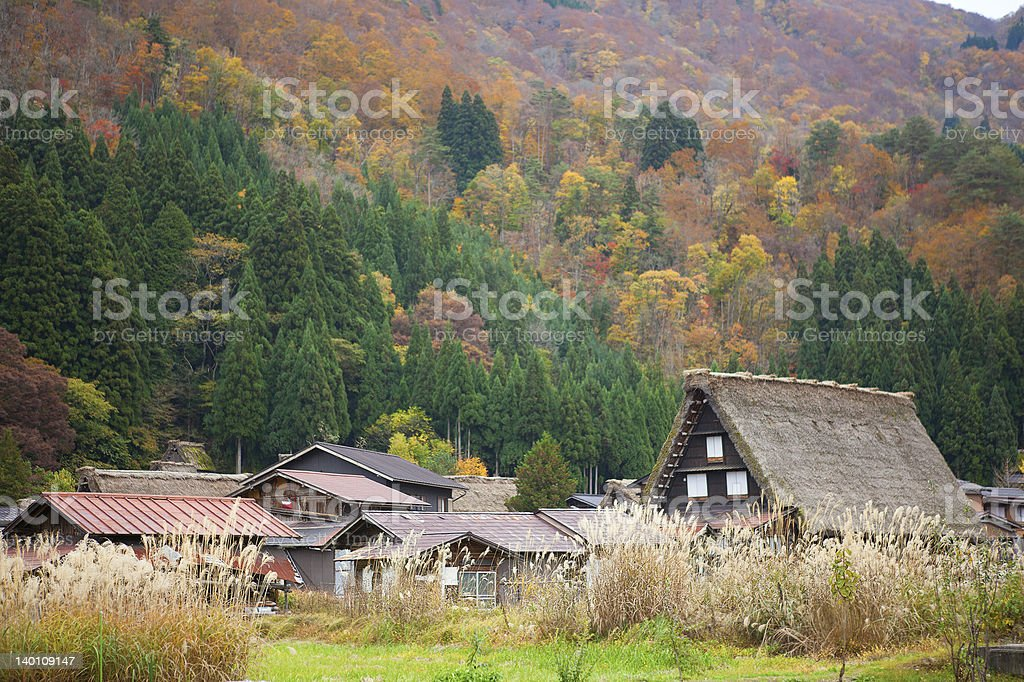 Houses in historic village Shirakawa-go, Gifu prefecture, Japan stock photo