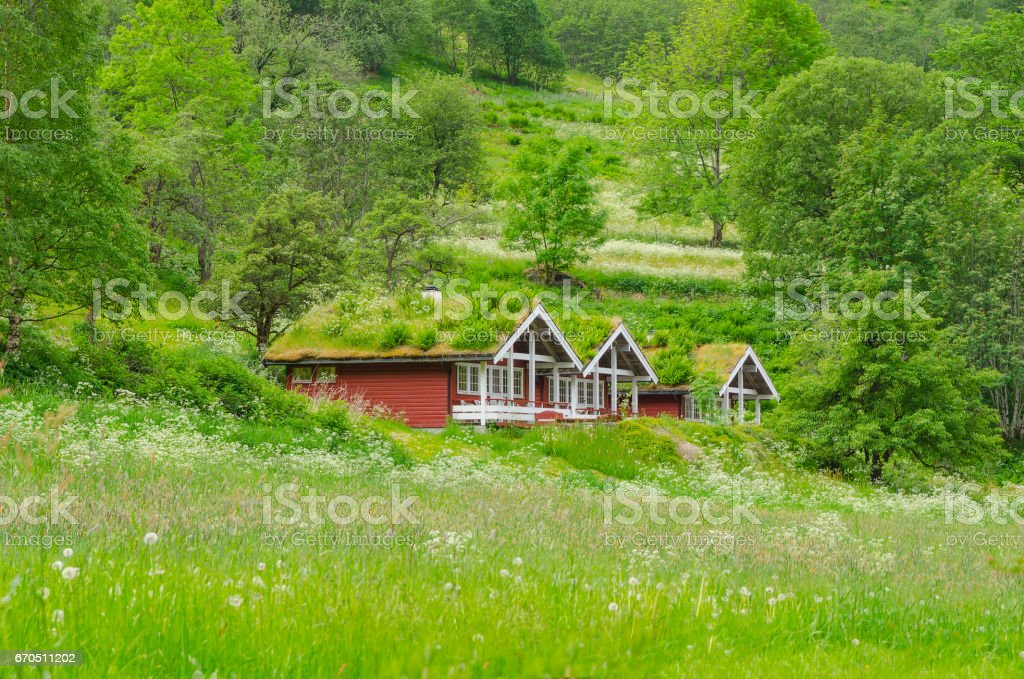 Houses in Norway stock photo