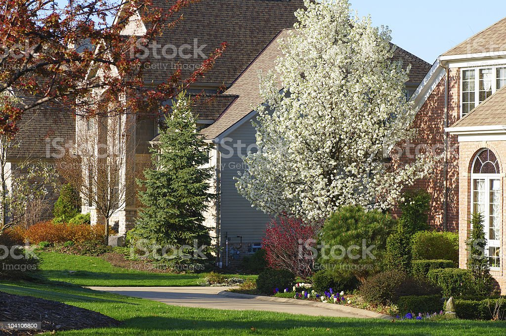 Houses in springtime stock photo