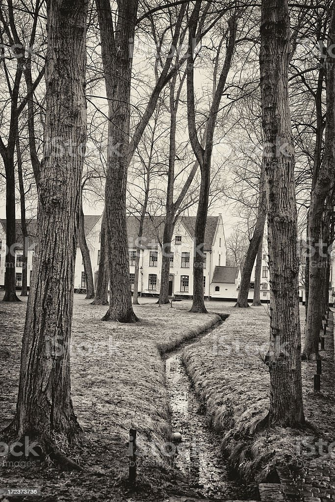 Houses in the forest near Bruges stock photo