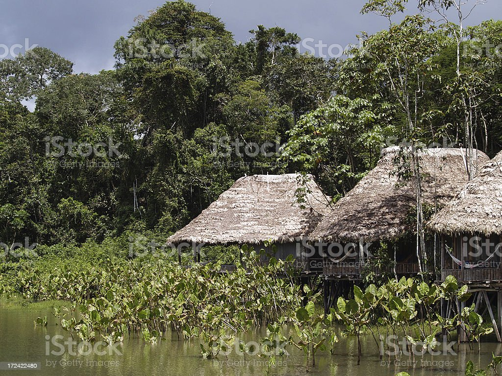Houses in Tropical jungle, Amazons, Equador stock photo