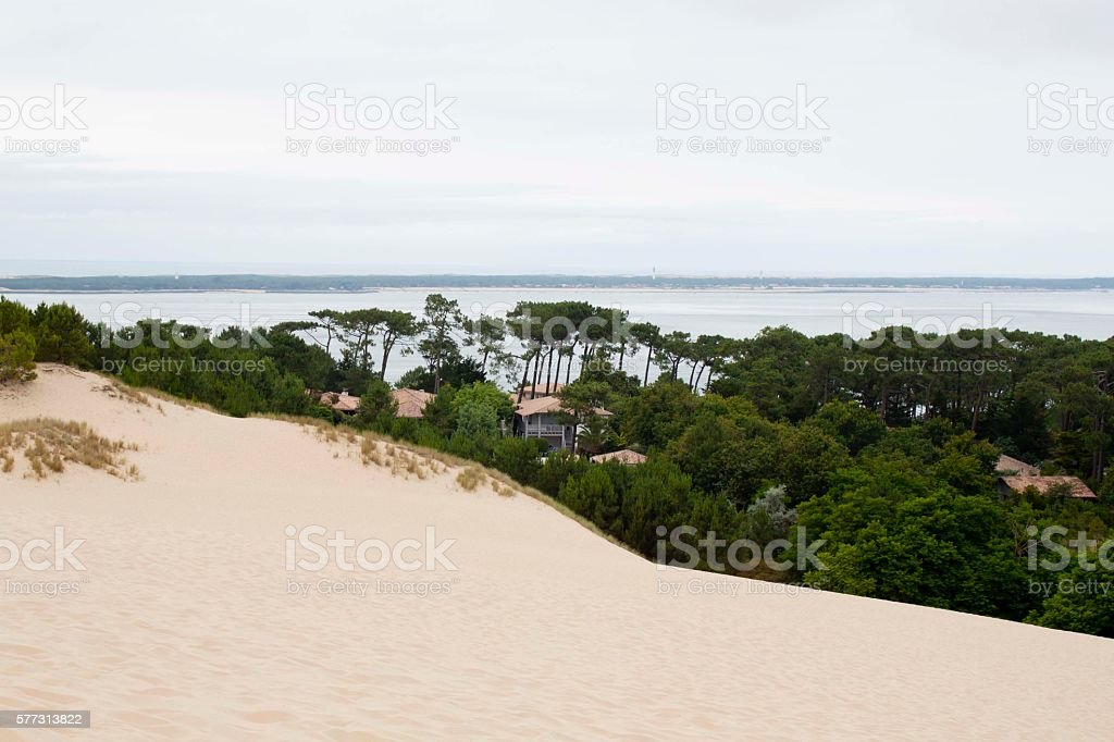 houses near the coast, between trees stock photo