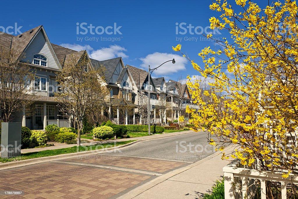 Houses on residential street in spring stock photo