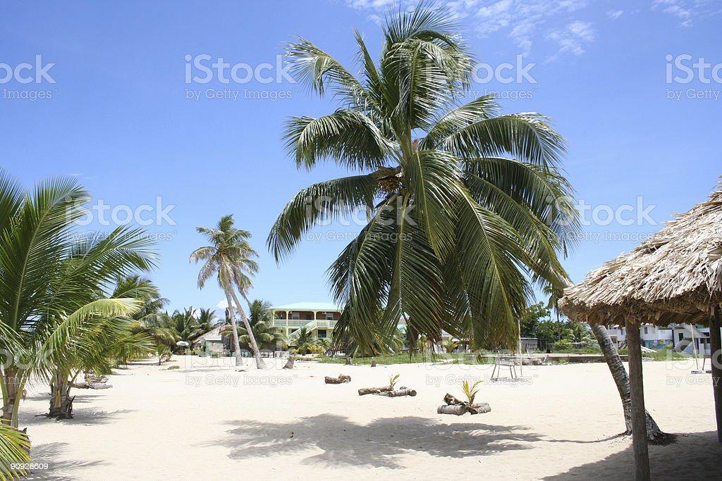houses on the beach stock photo