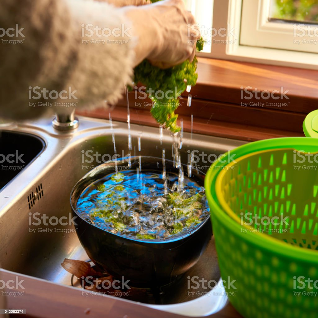 Housewife some salad for a vegetarian meal a sunny afternoon stock photo