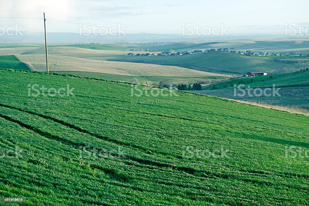 Housing development and agricultural land in Oregon stock photo