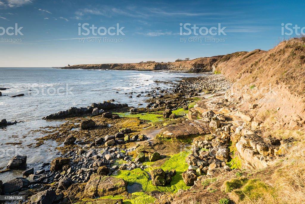 Howick coastline stock photo
