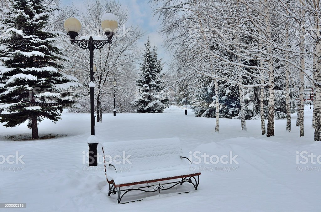 Сhristmas tree, bench and lantern stock photo