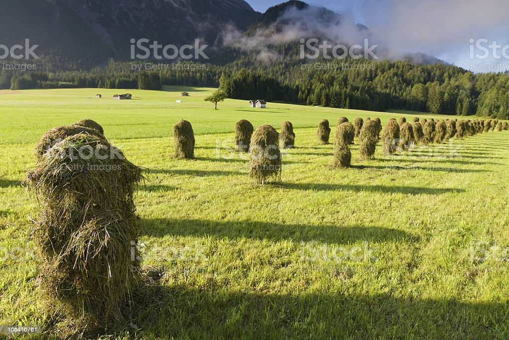 'Huanza' in Austria royalty-free stock photo