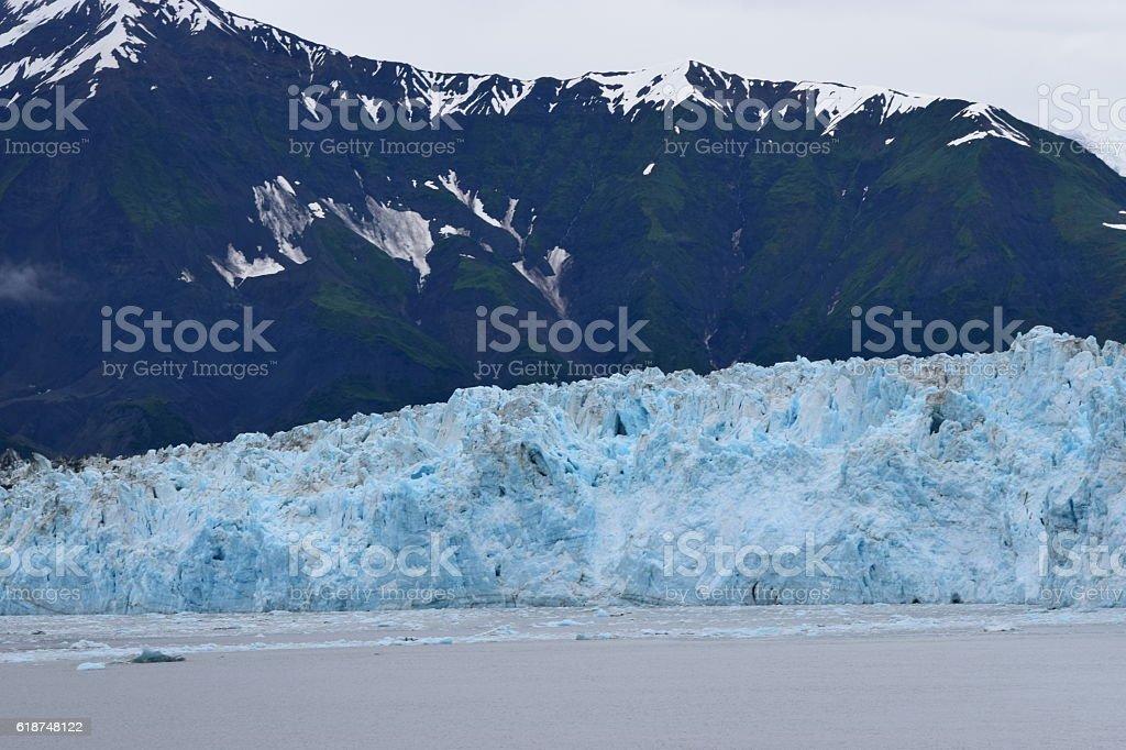 Hubbard Glacier near Vegetation stock photo