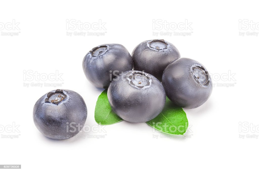 Huckleberry isolated on a white background cutout stock photo