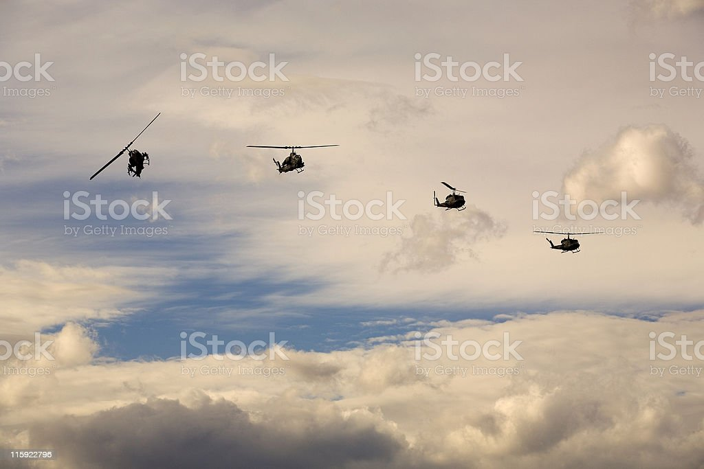Huey and Cobra Helicopters 05 royalty-free stock photo