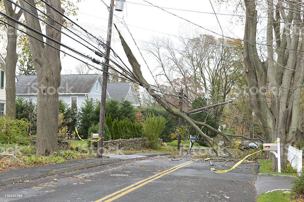 Huge branch crushed power lines during Hurricane Sandy stock photo